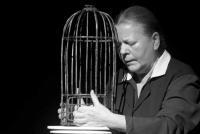 Многоликость моно/ VII Международный фестиваль моноспектаклей «Монокль» (г.Санкт-Петербург)