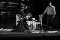 Семинар театральных критиков п\р Н.Д.Старосельской в Рыбинске
